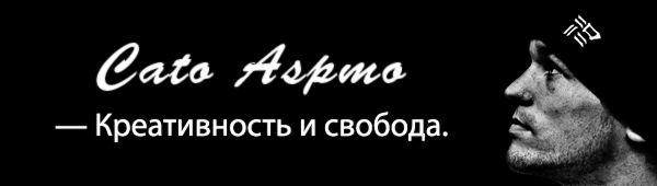 Интервью с трейсером Като Аспмо